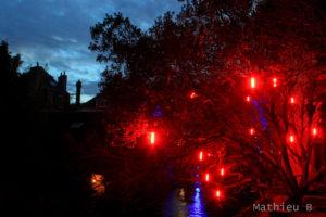 Arbres lumineux à Pont Aven en Lumières