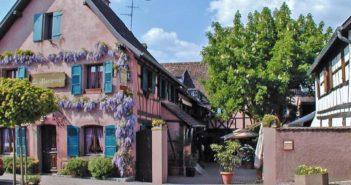 Le Marronier restaurant Alsacien adhérent Reso 6768