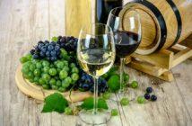 Verres de vin blanc et rouge et grappes de raisins
