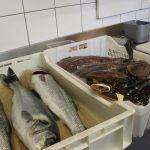 Les produits locaux au restaurant Escapades à Bénodet