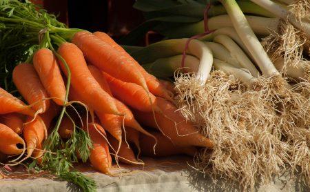 carottes slow food reso 29