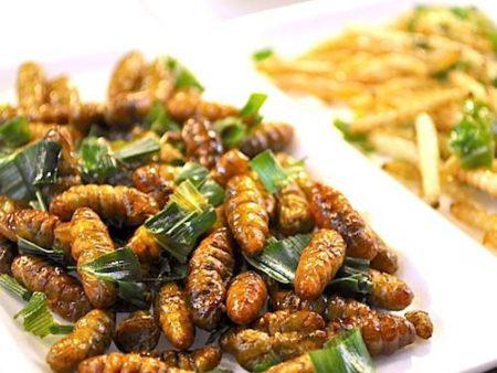 Les insectes arrivent dans la gastronomie française