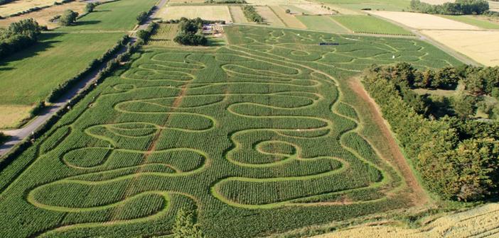 La Labyrinthe en Délire, parc de loisirs à Talmont Saint Hilaire en Vendée