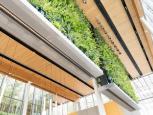 Projet écologique pour McDonald's