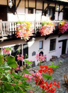 Un magnifique Hôtel en Alsace à découvrir rapidement