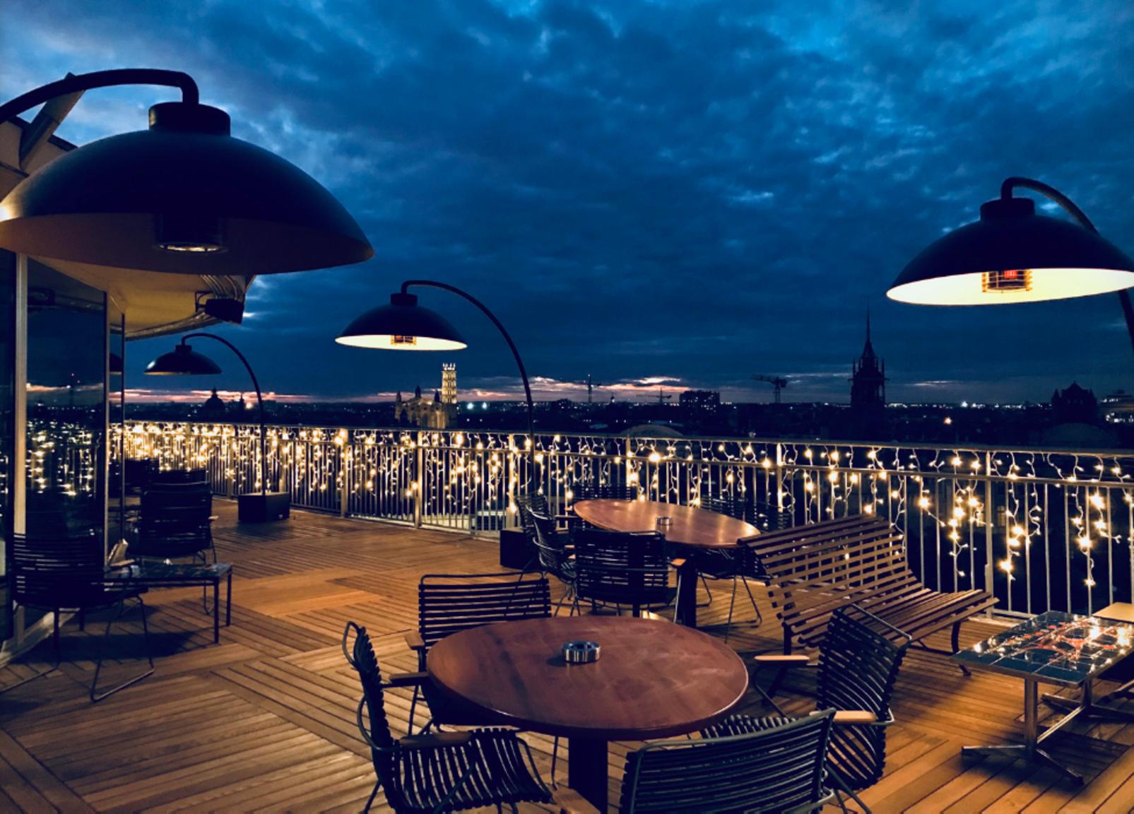 Terrasses de Toulouse : Ma biche sur mon toit